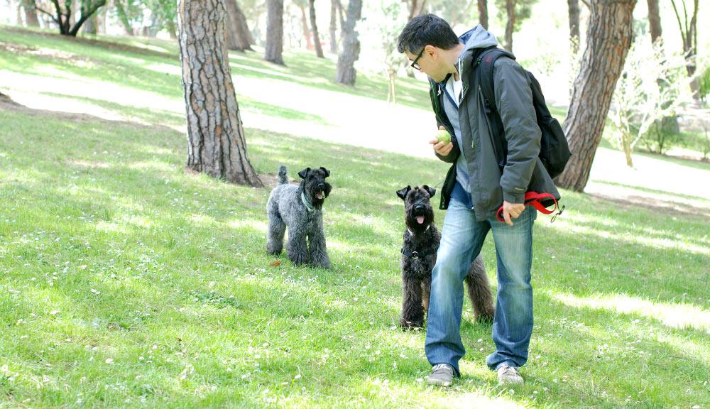 Clara y Camilo jugando en el Parque del Oeste